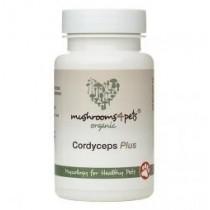 Cordyceps Plus 60  x 500mg capsules