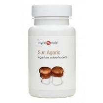 MycoNutri Sun Agaric